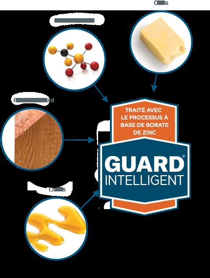 Infographie de planche SmartGuard